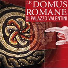 foto ticket Domus Romane di Palazzo Valentini
