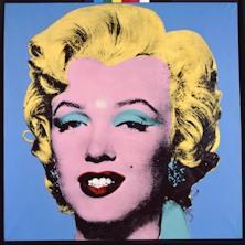 Warhol + O'Neill - Biglietti