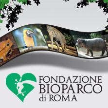 Bioparco – Biglietto Open 2017