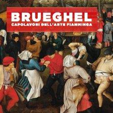 foto ticket Ingresso Brueghel