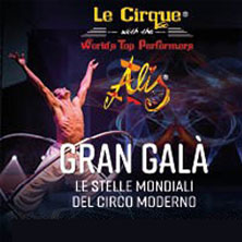 Le Cirque Top Performes