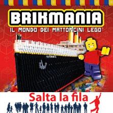 foto ticket Brikmania - Il mondo dei mattoncini Lego