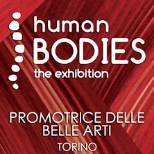 foto ticket Human Bodies