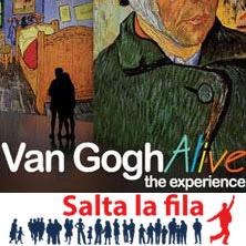 foto ticket Van Gogh Alive