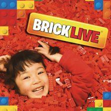 foto ticket Bricklive