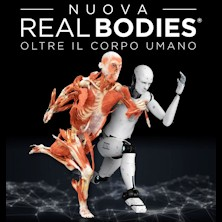 Nuova Real Bodies