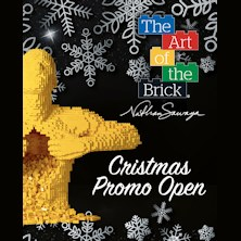 Christmas Promo Open - The Art of the BrickTorino