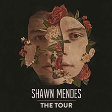 foto ticket Shawn Mendes