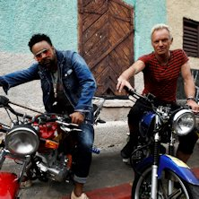 Sting - Special Guest Shaggy