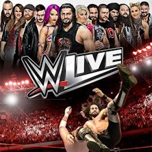 UPGRADE WWE Live SuperStar Experience