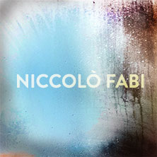 Niccolo' Fabi